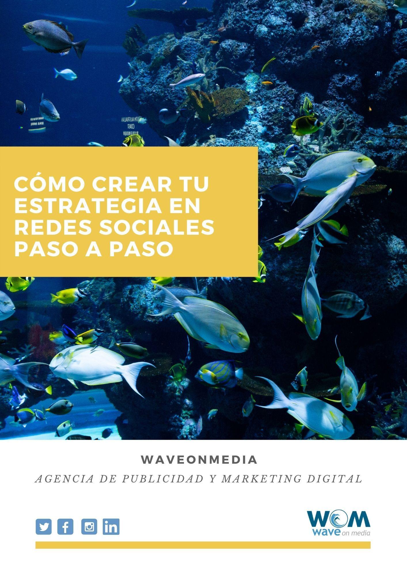Portada-como-crear-tu-estrategia-en-redes-sociales-paso-a-paso-Wave On Media