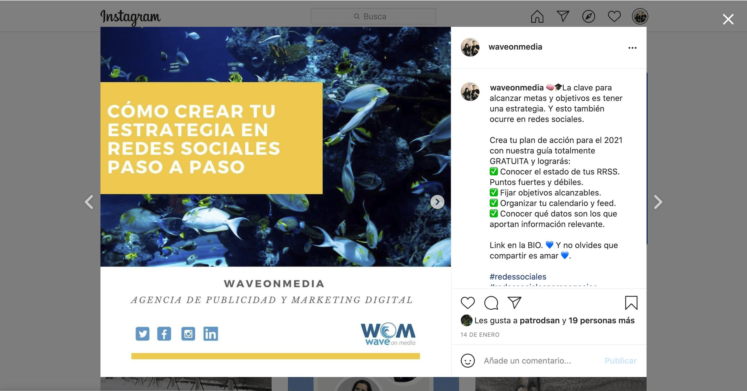 Qué-es-Instagram-perfil-empresa-_Wave-On-Media